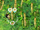 Bonga Online Harvesting Bamboo