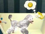 Dog Hotel Lite Dog Bath