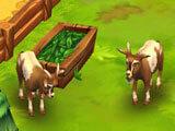 Zoo 2: Animal Park: Feeding goats