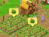 corn harvest in Big Farm