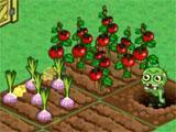 Harvesting crops in Zombie Farm 2