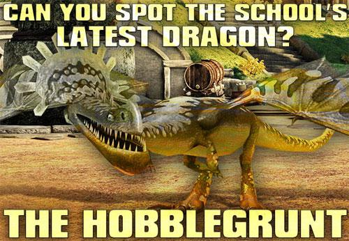 New Dragon in School of Dragons