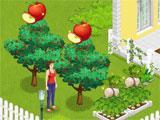 Suburbia 2 Apples