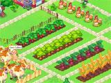 Zooland beautiful farm