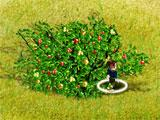 Virtual Villagers: A New Home Forager