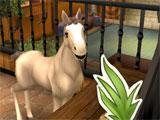 Horse Haven: World Adventures
