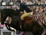 Race in My Horse