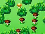 Mushroomers: New Season