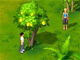 Island Castaway: Lost World searching for fruit