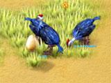 Farm Frenzy 3: Madagascar Guinea Birds