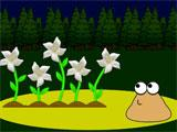 Pou: Gardening