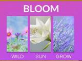 Word Flowers Grow Flowers