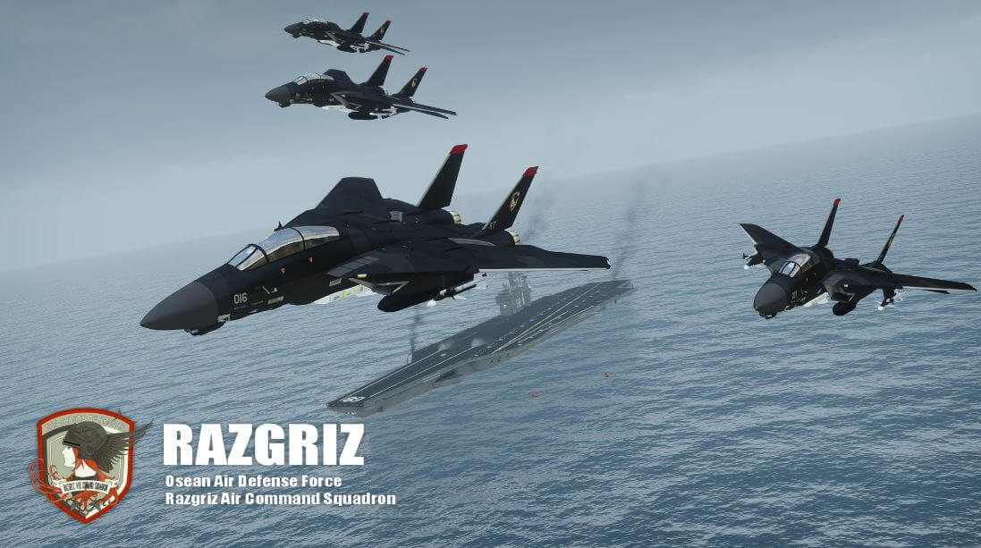 Razgriz squadron Ace Combat 5