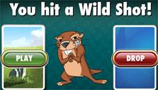 a Wild Shot can mean trouble in Fairway Solitaire