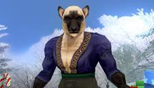 Character creation in EverQuest