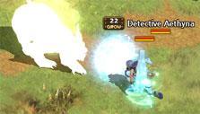 Record of Lodoss War Online: Combat gameplay