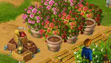 FarmCliff: Growing flowers