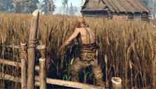 Harvesting wheat in Life is Feudal
