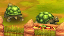 Giant tortoises in Zoo 2: Animal Park