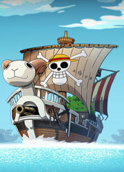 One Piece H5