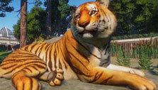 Planet Zoo: Bengal tiger