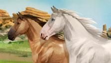 Howrse Wild Horses