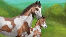 Mare & Foal in Howrse