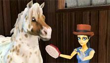 Grooming in Star Stable