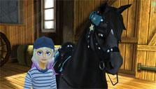 Star Stable Your Barn