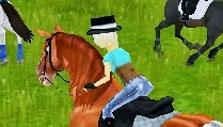 Countryside Ride in Star Stable