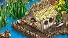 Duck House in Farmandia