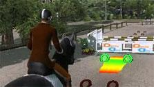Approach in Ride: Equestrian Simulation