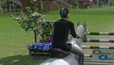 Simple Jump in Ride: Equestrian Simulation