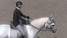 Ride: Equestrian Simulation Practice Field