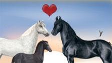 Horzer Horse Family