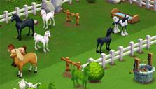 Farmville 2: Many horse breeds