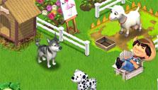 Pets in Family Farm