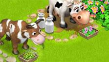 Family Farm: Cows