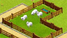 Sheep in My Free Zoo