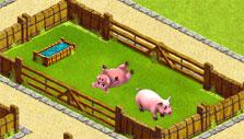 My Free Zoo: Pigs