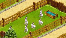 Rabbits in My Free Zoo