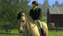 Horse and rider in Riding Club Championship