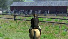 Trotting in Riding Club Championship