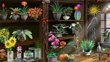 Florist in Uptasia