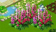 Holyhocks in Flower Ville