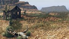 The West: Desert