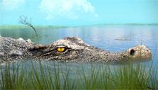 Deinosuchus in Jurassic Park Builder