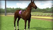 Blazing Silks: Champion horse