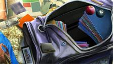 Victim's bag in The Lost Detective