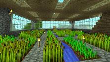 Greenhouse in Minecraft